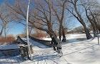 Toronto Islands in the Winter